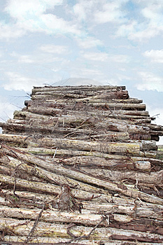 Logs High Piled Royalty Free Stock Images - Image: 8512449