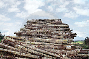 Logs Piled High Royalty Free Stock Photos - Image: 8512468