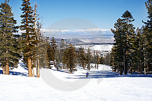 Mammoth Mountain Skier Stock Photography - Image: 8516132