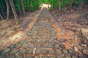 Ancient Stone Path From Ta Som Temple. Angkor Wat Royalty Free Stock Photos - Image: 8516638
