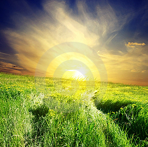 Green Field And Beautiful Sunset Stock Photo - Image: 8517930