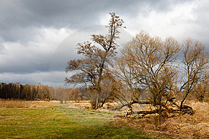 Landscape In Poland Royalty Free Stock Photo - Image: 8519995