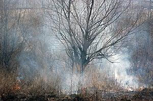 Burning Earth. Stock Photography - Image: 8520202