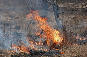 Burning Earth. Royalty Free Stock Photo - Image: 8520305