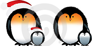 Penguins X2 Isolated Royalty Free Stock Photo - Image: 8520905