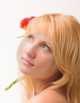 Beautiful Girl With Flower In Hair Stock Photography - Image: 8521892