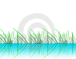 Grass Stock Photos - Image: 8523853