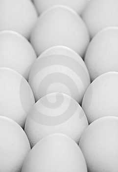 Pack Of Eggs Stock Photography - Image: 8524722