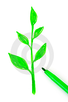 Drawing Plant And Pen Stock Photo - Image: 8528020
