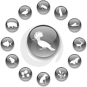 Set Buttons - 98_A. Nature Stock Photos - Image: 8529743