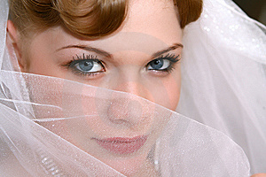 Bride Stock Photos - Image: 8530643