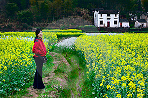In Rape Field Stock Photography - Image: 8531092