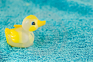 Ducky Toy Stock Photography - Image: 8531592