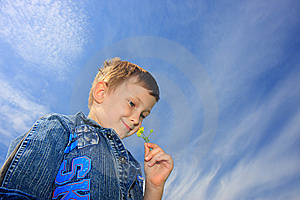 The Boy And Flower Royalty Free Stock Photography - Image: 8533727