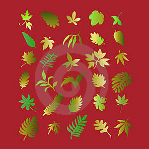 Leaf 2 Royalty Free Stock Photo - Image: 8534785