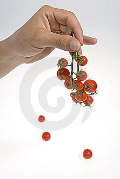 Cherry Tomato Royalty Free Stock Photos - Image: 8535558