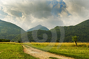 Road Campaign Royalty Free Stock Photography - Image: 8535607
