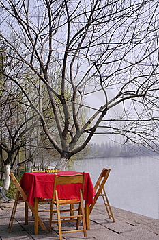 The Desk And Tree On Waterside Stock Photo - Image: 8536610
