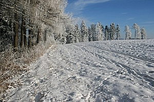 Winter Landscape Royalty Free Stock Image - Image: 8537596