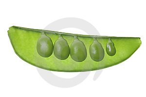 Green Pea Pod Isolated On White Royalty Free Stock Image - Image: 8539326