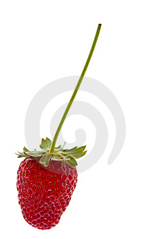 Red Strawberries Royalty Free Stock Photo - Image: 8539345