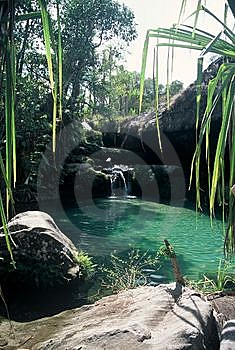 Natural Swimming Pool,Madagascar Royalty Free Stock Images - Image: 8539519