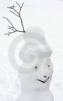 Head Of Natural Snowman Stock Image - Image: 8540501