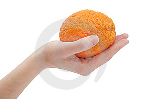 Orange In Hand On White Background Royalty Free Stock Images - Image: 8541269