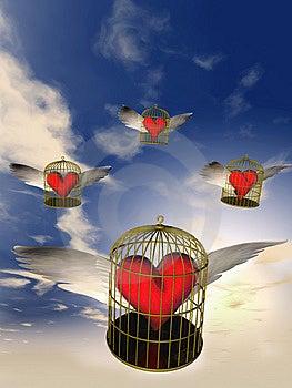 Cage Stock Photos - Image: 8543873