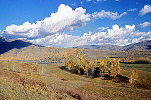 China/Xinjiang: Fall In Hemu Village Royalty Free Stock Image - Image: 8544066