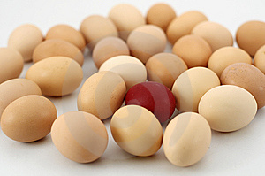 Easter Eggs Stock Photography - Image: 8545022