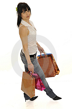 Shopping Lady Stock Photography - Image: 8546782