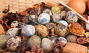 Eggs Display In Straw Basket Stock Photo - Image: 8546870
