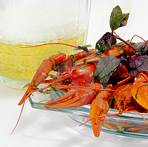 Crayfishes And Beer Stock Image - Image: 8547021