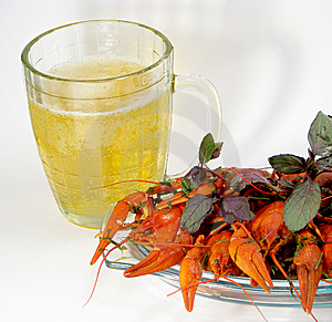 Crayfishes And Beer Stock Images - Image: 8547064