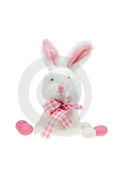 Easter Bunny Stock Image - Image: 8547101