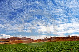 Bashang Grassland In Autumn, Good Harvest Royalty Free Stock Images - Image: 8549109