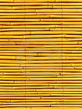 Égrappe Une Usine Un Bambou Photos libres de droits - Image: 8551088