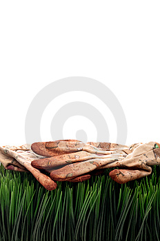 Old Worn Workgloves On Green Grass Stock Photography - Image: 8551502