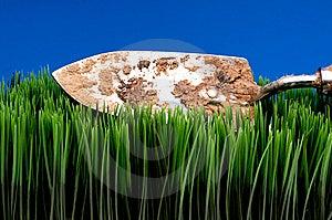 Vanga Di Giardino Sporca Su Erba Fotografia Stock Libera da Diritti - Immagine: 8551567