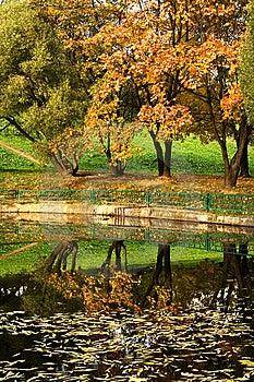 Autumn Park 11 Royalty Free Stock Image - Image: 8555306