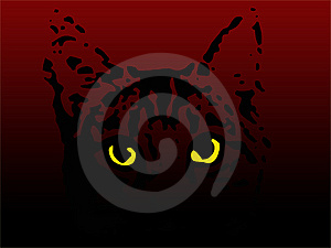 Cat Eyes Royalty Free Stock Images - Image: 8555489