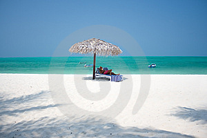 Tropical Beach Stock Photography - Image: 8556932
