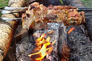 Appetizing Roasted Meat - Shish Kebab. Royalty Free Stock Images - Image: 8557289