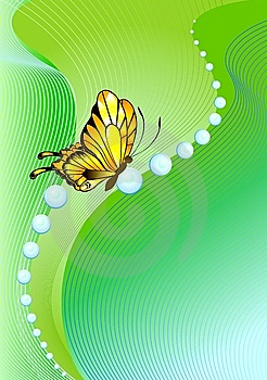 The Beautiful Butterfly Royalty Free Stock Images - Image: 8557729