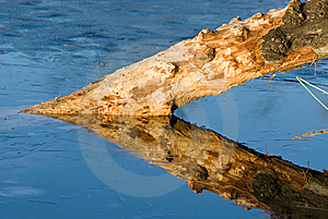 Triangle Reflection Royalty Free Stock Image - Image: 8557966