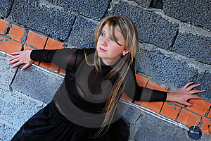 The Girl Royalty Free Stock Photos - Image: 8558358