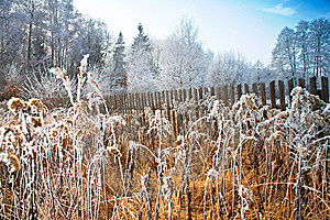 Frozen Field Stock Photography - Image: 8558362