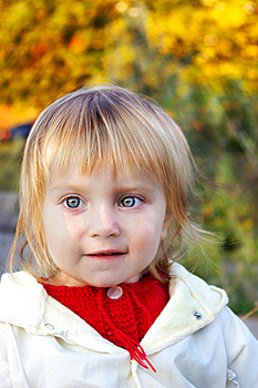 Cute Little Girl And Autum Royalty Free Stock Photography - Image: 8559667