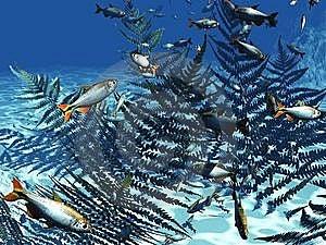 Underwater World Royalty Free Stock Photo - Image: 8560045